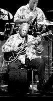 BB King at Wolf Trapp